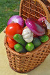 Raw, ripe vegetables in the picnic basket