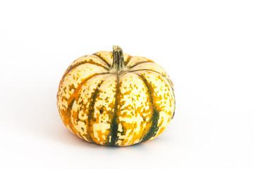 Zierkürbis, ornamental or decorative gourd