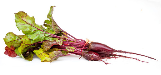 Beet  with tops