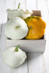 Squash vegetable