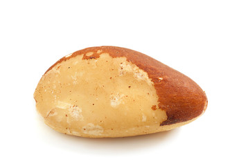 Brazil nut isolated