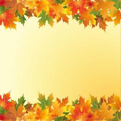 осенний фон с кленовыми листьями