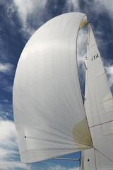 sailing - vela - barca