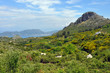 Samos - Landschaft