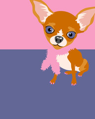 Funny illustration of a chihuahua