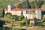Baion Palace vineyards