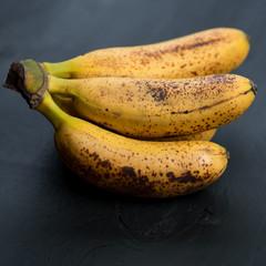Still life fruits: mini banana, studio shot