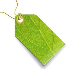 Grüner Preisanhänger mit Pflanzenstruktur - full vector