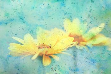 cute yellow daisies and watercolor splatter