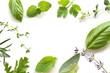 herbal leaves