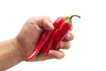red chili peppers in hand on white background