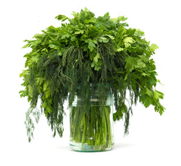 dill with parsley on a white background