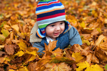 baby boy in autumn leaves