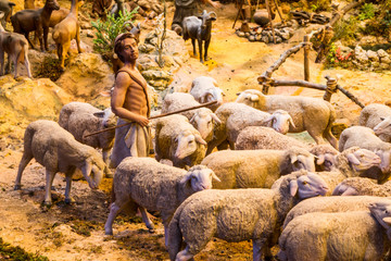 Shepherd with a herd of sheep
