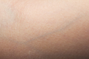 background of the skin with veins