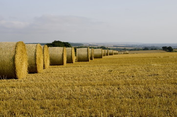 Straw Bales reaching into the Mist
