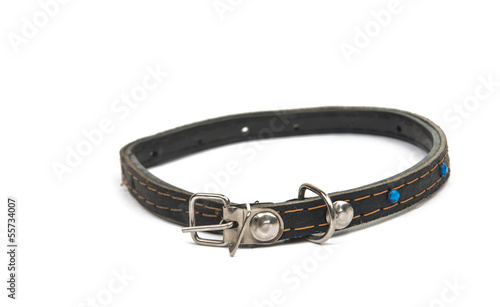 cat collar isolated