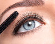 Beauty female eye with long false eyelashes