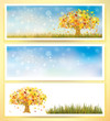 Vector autumn banners and elements for design.