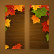 Vector Illustration of Two Autumn Banners