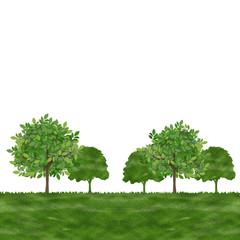 木  コピースペース 風景