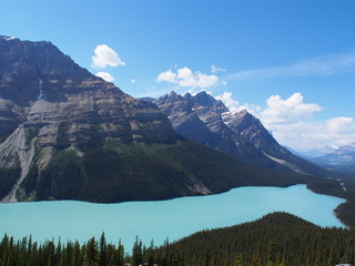 Peyto Lake at Jasper National Park