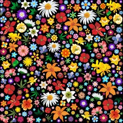 Spring and Summer Flowers Pattern-Fiori Primavera Sfondo