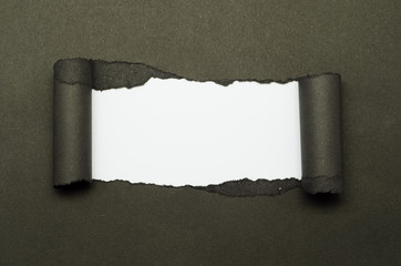 Torn Paper and space for text with white background