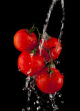 tomatoes in the droplets of water