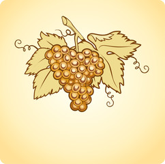 template for wine with grape and leaf