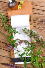 Notepad with different herbs
