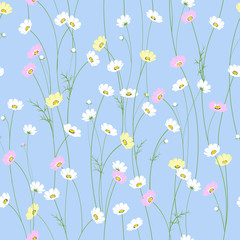 Vector seamless texture with chamomile flowers