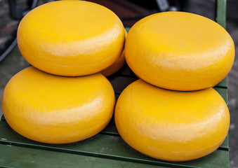 Dutch Gouda cheese