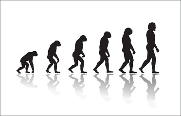 Evolution of human high resolution