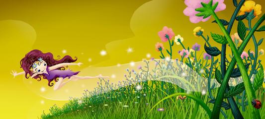 volando campo de flores