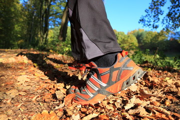 man walking cross country trail in autumn forest
