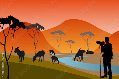 The african safari
