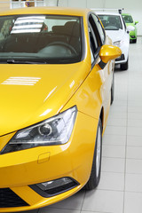 New yellow, white and green shining cars stand in office of car