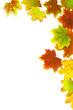 Herbst 38