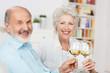 älteres ehepaar prostet mit einem glas wein - 55768031