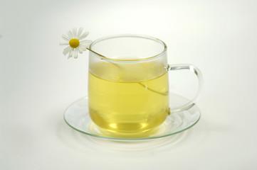 Kamille im Tee-Becher mit Tee, Nahaufnahme
