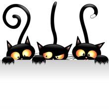 Śmieszne koty koty śmieszne kreskówki z panelem panelu