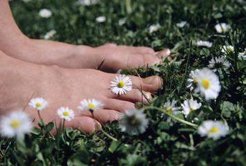 Füße auf Gras mit Gänseblümchen-Blumen, Nahaufnahme