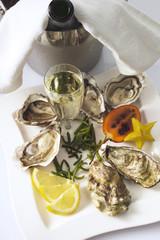 Frische Austern, erhöhte Ansicht