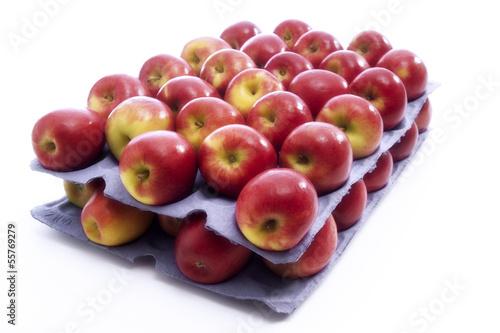 Frische Äpfel - Sorte Jazz