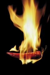 Brennende Peperoni