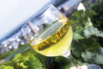 Weinprobe, Glas Weißwein
