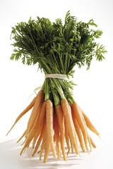 Bündel Karotten, Nahaufnahme