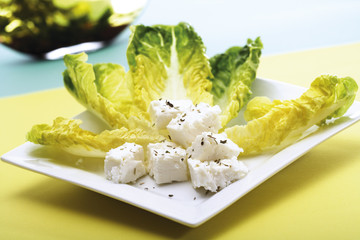 Romana-Salat mit Feta-Käse