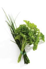 Schnittlauch, Petersilie, Allium schoenoprasum, Petroselinum crispum